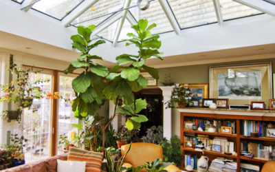 6 Great Places to Install a Skylight